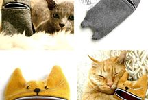 Kitties / by Cathy Good