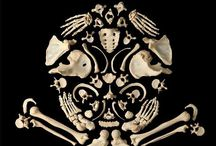 Things about skulls and bones