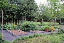 Alles rund um den Garten / Alles für den Garten: Gartengeräte und Gartenwerkzeug für Rasen, Beet und Teich , Garten, Urban Gardening, Teich, Tier und Zubehör.