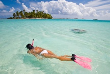 Snorkeling / The best snorkeling, scuba diving, snuba, free diving and underwater scenes in the world.