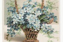çiçekler panosu