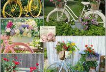 Vintage bisikletler