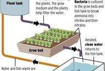 Hydroponics / Hyydroponics gardening systems