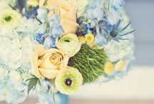 Flower themes - blue