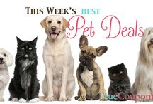 Pet Deals / by True Couponing Deals & Savings