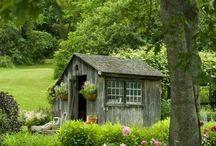 garden ⛲