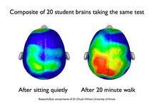 Πώς η σωματική δραστηριότητα βελτιώνει τις ακαδημαϊκές επιδόσεις;