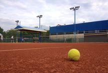 Arena sportiva