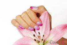 CocaLily-Accessories