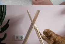 Eu Acho que vi um Gatinho! Os móveis que unem design e nossos amados bichinhos