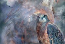 Hawk Art
