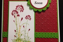 Silhouette coloured flowers / Get well card