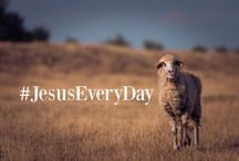 Jesus Every Day / The pin board for the book Jesus Every Day