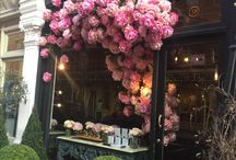 flower window display