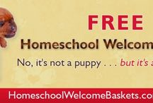 Homeschooling / Homeschools come in all shapes and sizes. I'm pinning homeschool days, curriculum, supplies, and more.