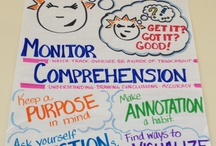 Classroom Monitoring Comp. / by Erin Knuth