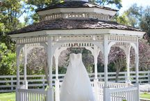 Wedding - Gazebo