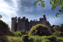 Castle's!!!
