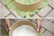 hojas en cemento bb