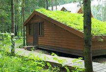 Сады на крышах / Сады на крышах, озеленение кровель