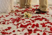 Weddings by Lortz / Beach Weddings