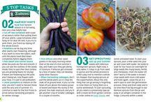 Veggie and garden tips
