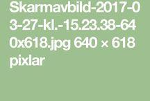 https://gfx-bloggar.aftonbladet-cdn.se/wp-content/blogs.dir/428/files/2017/03/Skarmavbild-2017-03-27-kl.-15.23.38-640x618.jpg