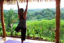 Health & Yoga / Health & Yoga