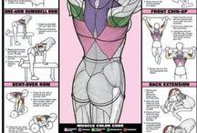 fitnez training