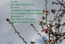 Lent and Easter Encouragement for all Ages - kids thru seniors / by Kaye Swain