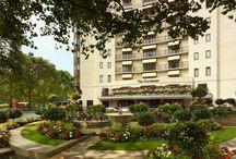 Dorchester Hotels