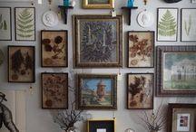 Naturalist's Home