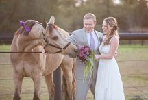 Shades of Purple Styled Shoot