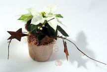 Creatief met planten