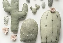 cactus e suculentas