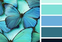 Color Palettes / colors for my website