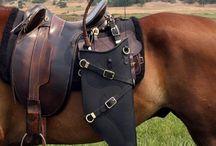 horses...my love