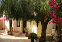 O Tartufo Bed & Breakfast / O Tartufo | B&B | Moncarapacho | Algarve | Portugal