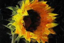 Still Life paintings-Florals / Still Life oils-floral / by Linda Spang