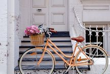Ladys Bicycle