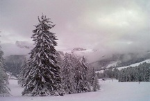 22.01.2013 Ancora neve fresca - Frau Holle ist sehr aktiv - Still snowing