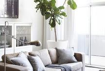 Träd i hem