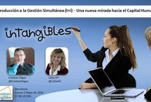 Instituto de intangibles