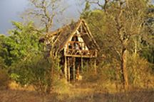 Exclusive and unique safari Kenyan  lodges / Amazing Kenyan lodges that you will absolutely enjoy visiting