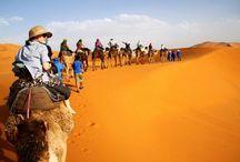 Excursie in Maroc si Sahara. aprilie 2018