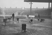 Manchester City vintage / Wszystko co związane z The Citizens w wersji retro