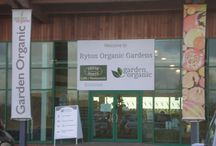 Visiting Ryton Organic in January / The Herb Sociey committee visited Garden Organic in January 2015