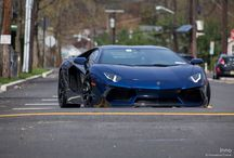 Lamborghini / Lamborghini cars