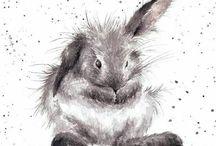 кролики, зайцы