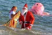 Christmas Fun in Norfolk!